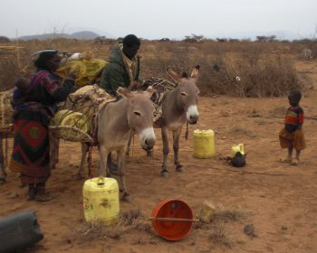 Wasser für Dürreopfer in Nordkenia